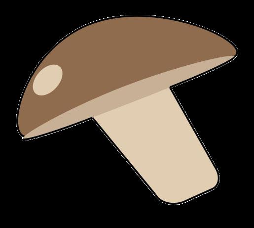 champignon-removebg-preview