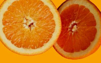 Vitamine C: wat is het en waar is het goed voor?